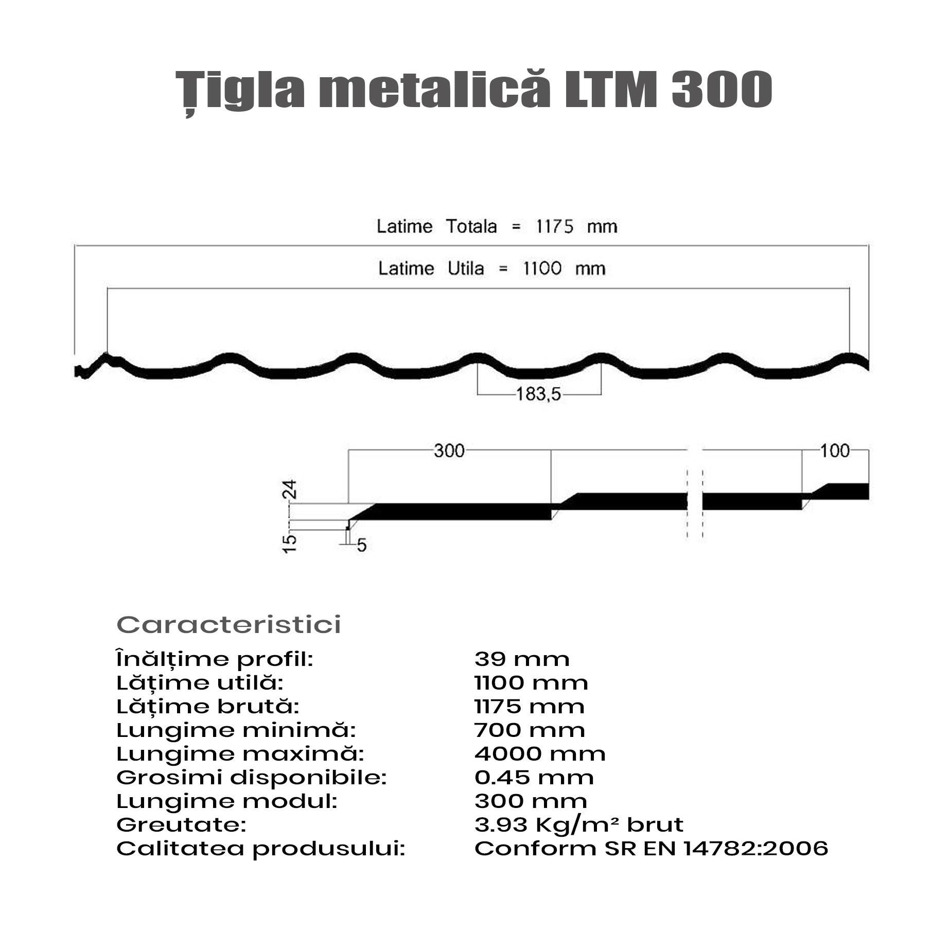 ltm300